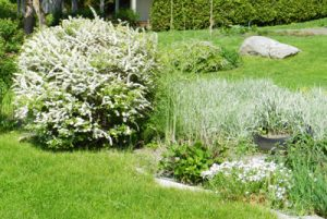 Lawn Treatments Arnold MD