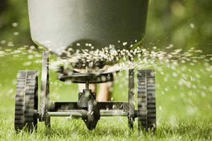 Lawn Treatments Glen Burnie MD