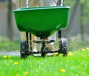 Lawn Treatments Millersville MD