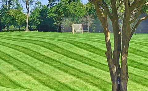 lawn care services on the green inc arnold md maryland