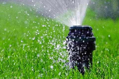 service-irrigation