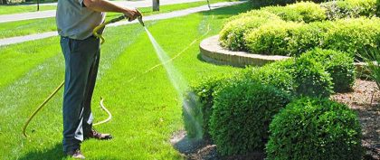 lawn care services on the green inc pasadena md maryland