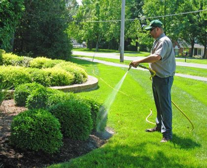 lawn care services on the green inc crofton md maryland