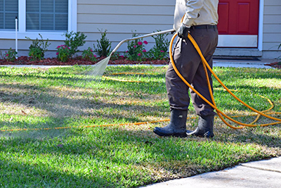 Pest Control in Davidsonville MD